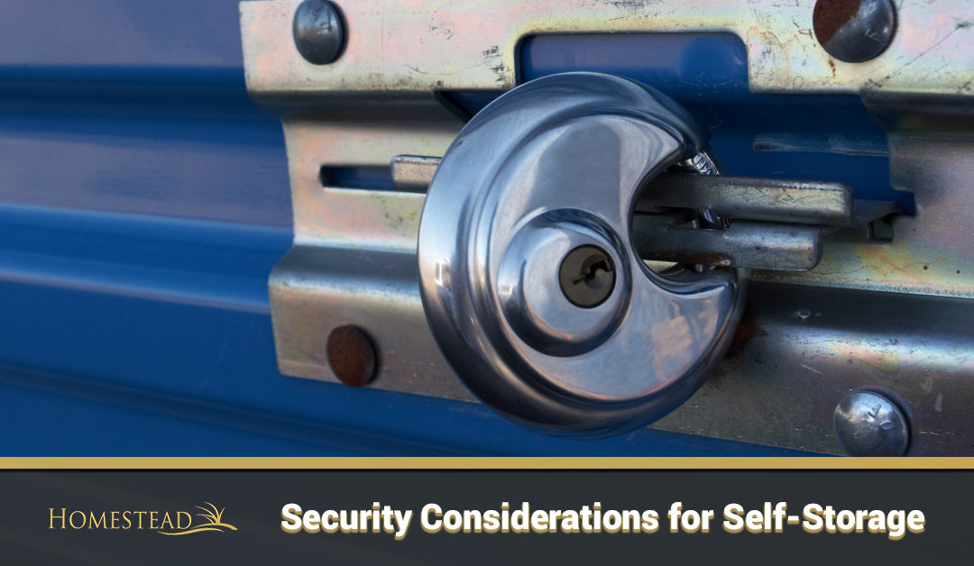 Security Considerations for Self-Storage