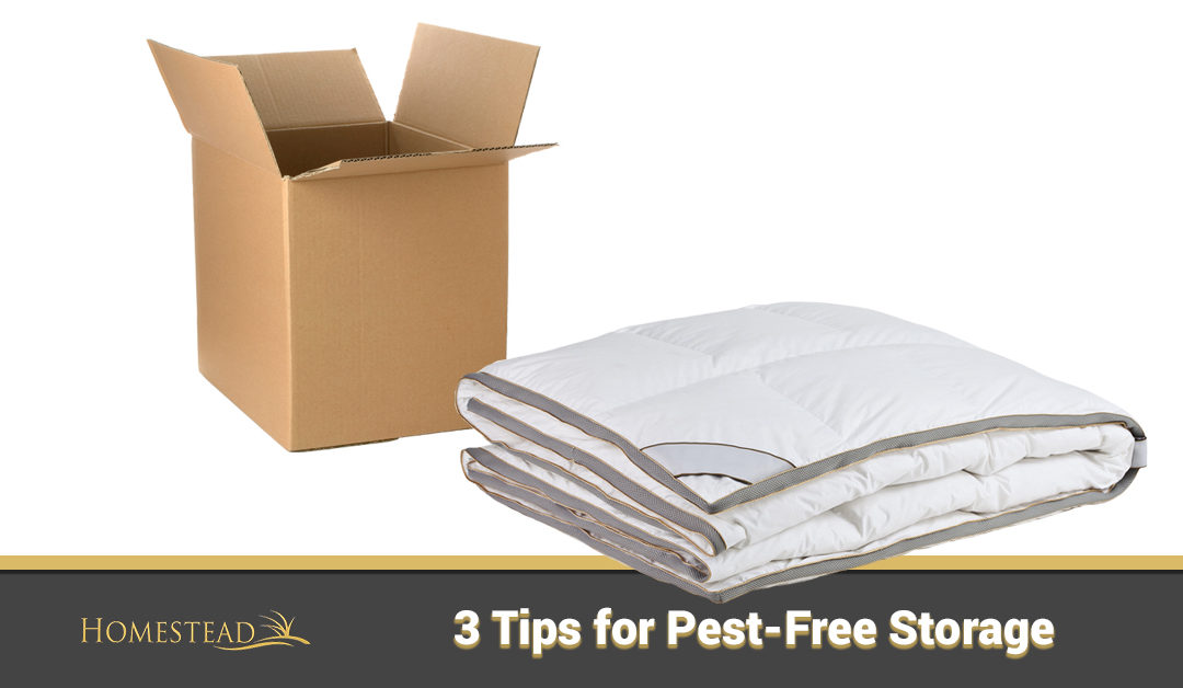 3 Tips for Pest-Free Storage