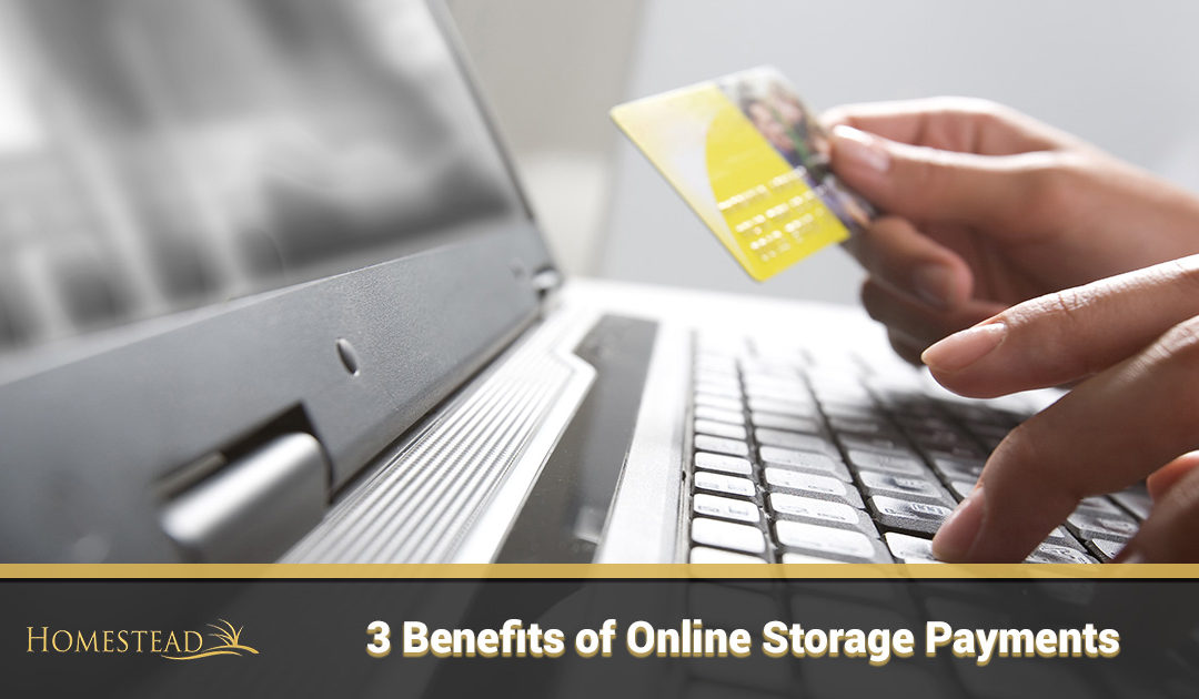 3 Benefits of Online Storage Payments