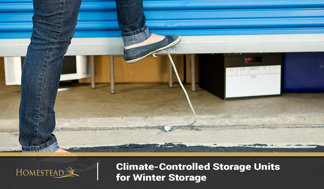 Climate-Controlled Storage Units for Winter Storage