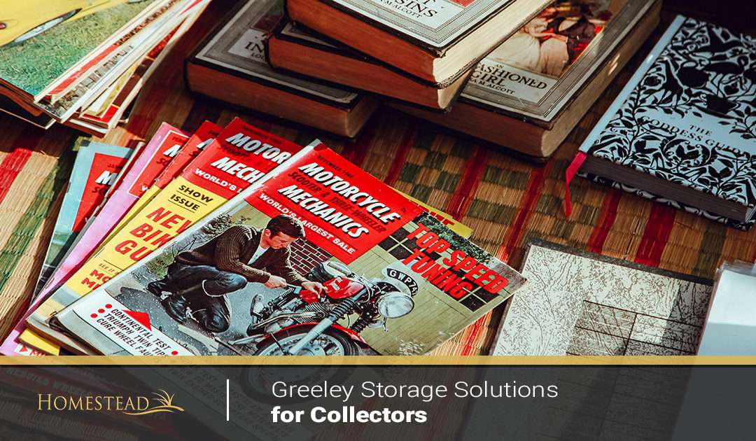 Greeley Storage Solutions for Collectors