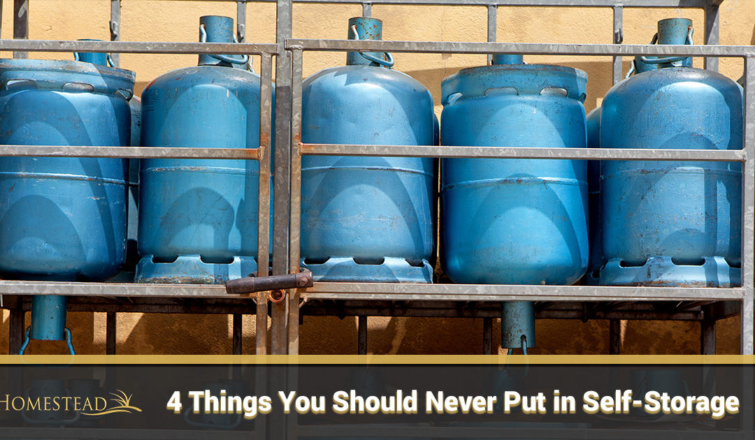 Four Things You Should Never Put in Self-Storage