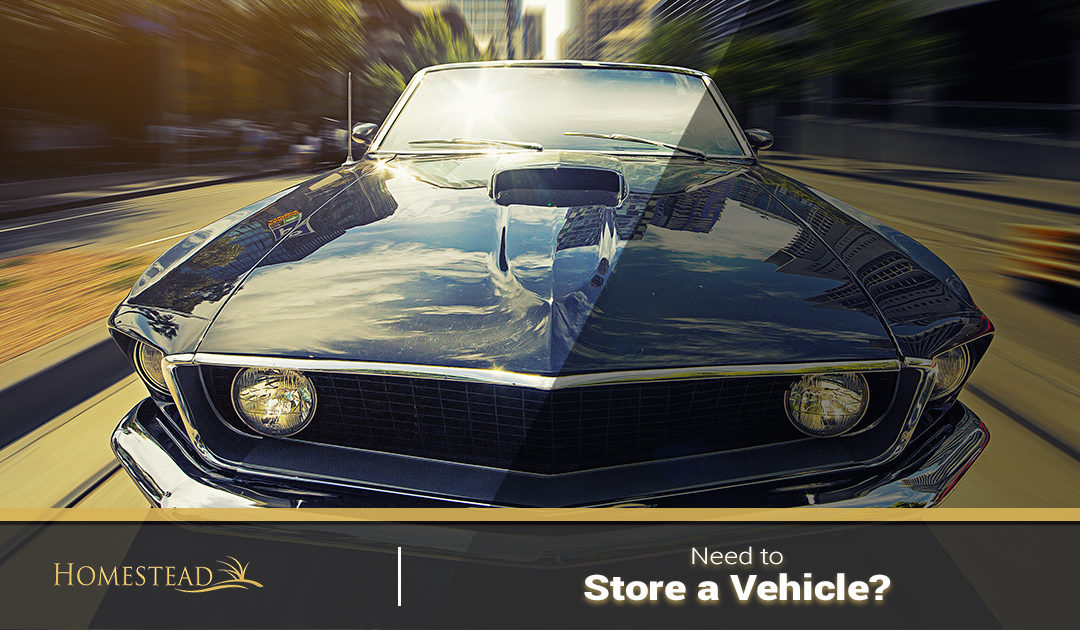 Need to Store a Vehicle?