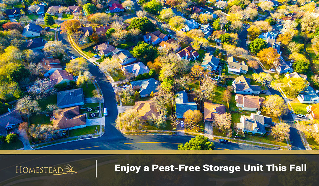 Enjoy a Pest-Free Storage Unit This Fall